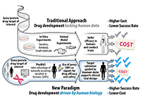 drug development paradigms diagram